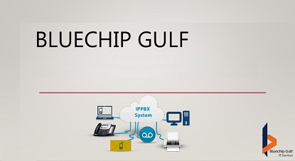 Bluechip Gulf IT Services